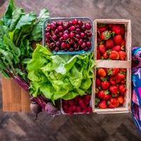 10 pomysłów na roślinny lunch idealny na upały